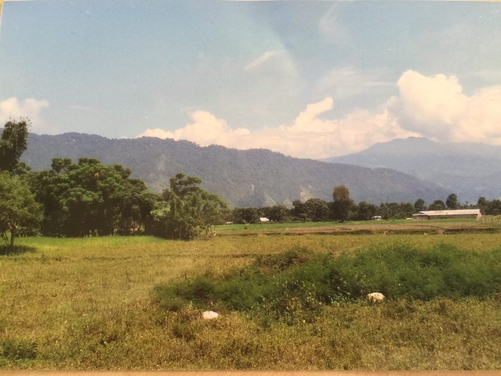 Land In Jaigon